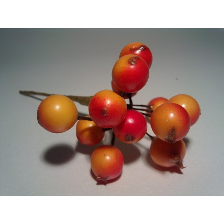 Rajskie jabłka, jarzębina w pęczku  12 szt  POMARAŃCZOWE